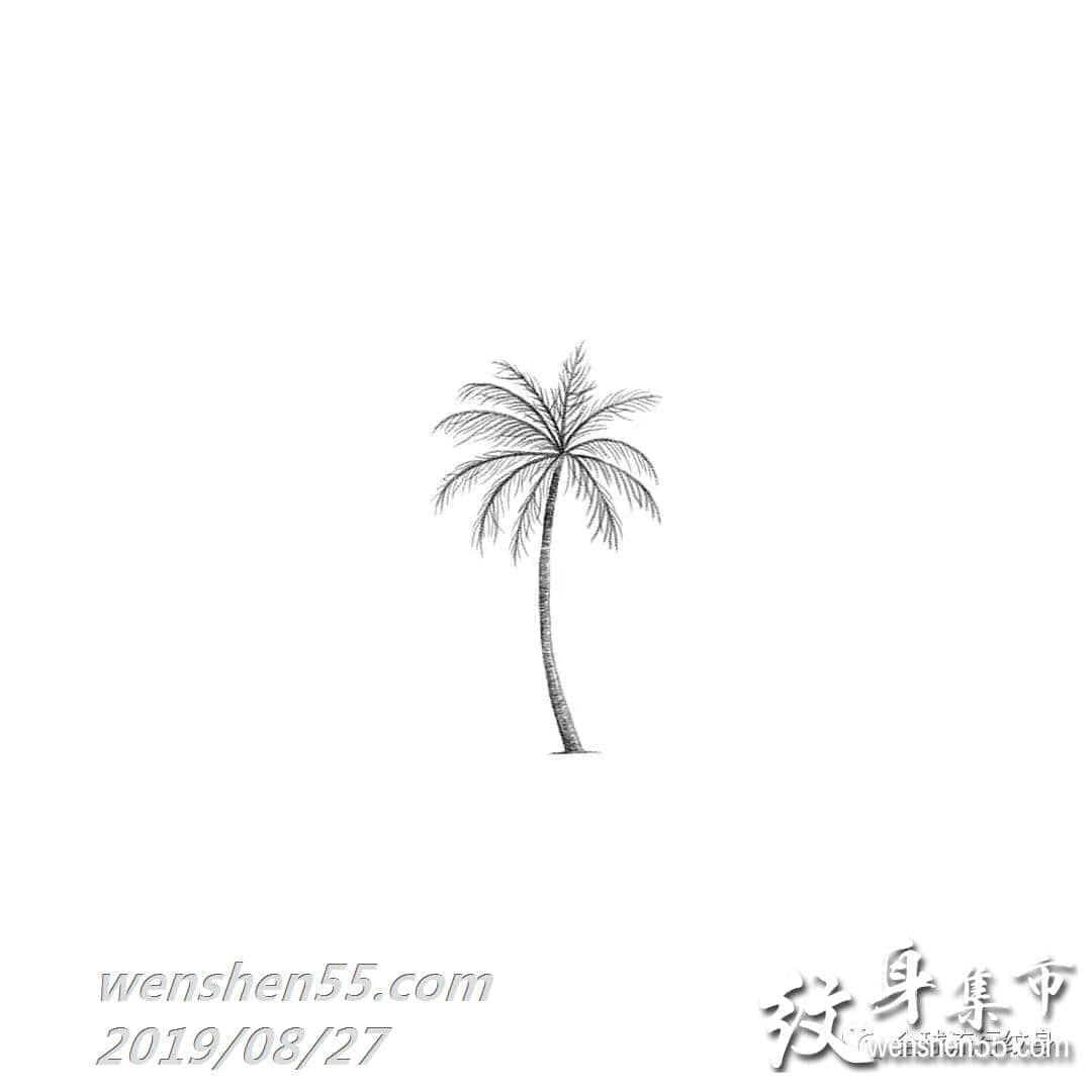 椰子树纹身,椰子树纹身手稿,椰子树纹身图案