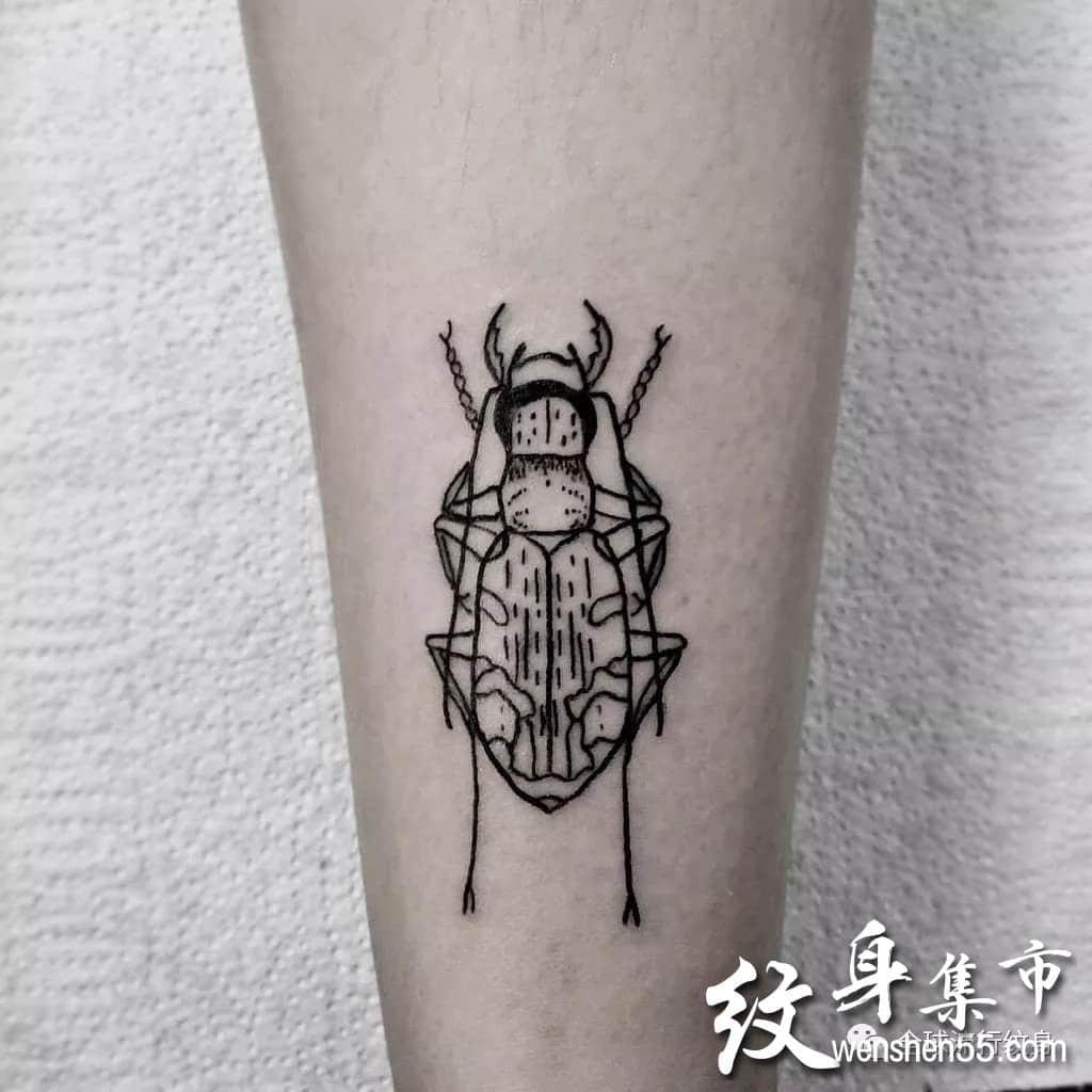 甲虫纹身,甲虫纹身图案