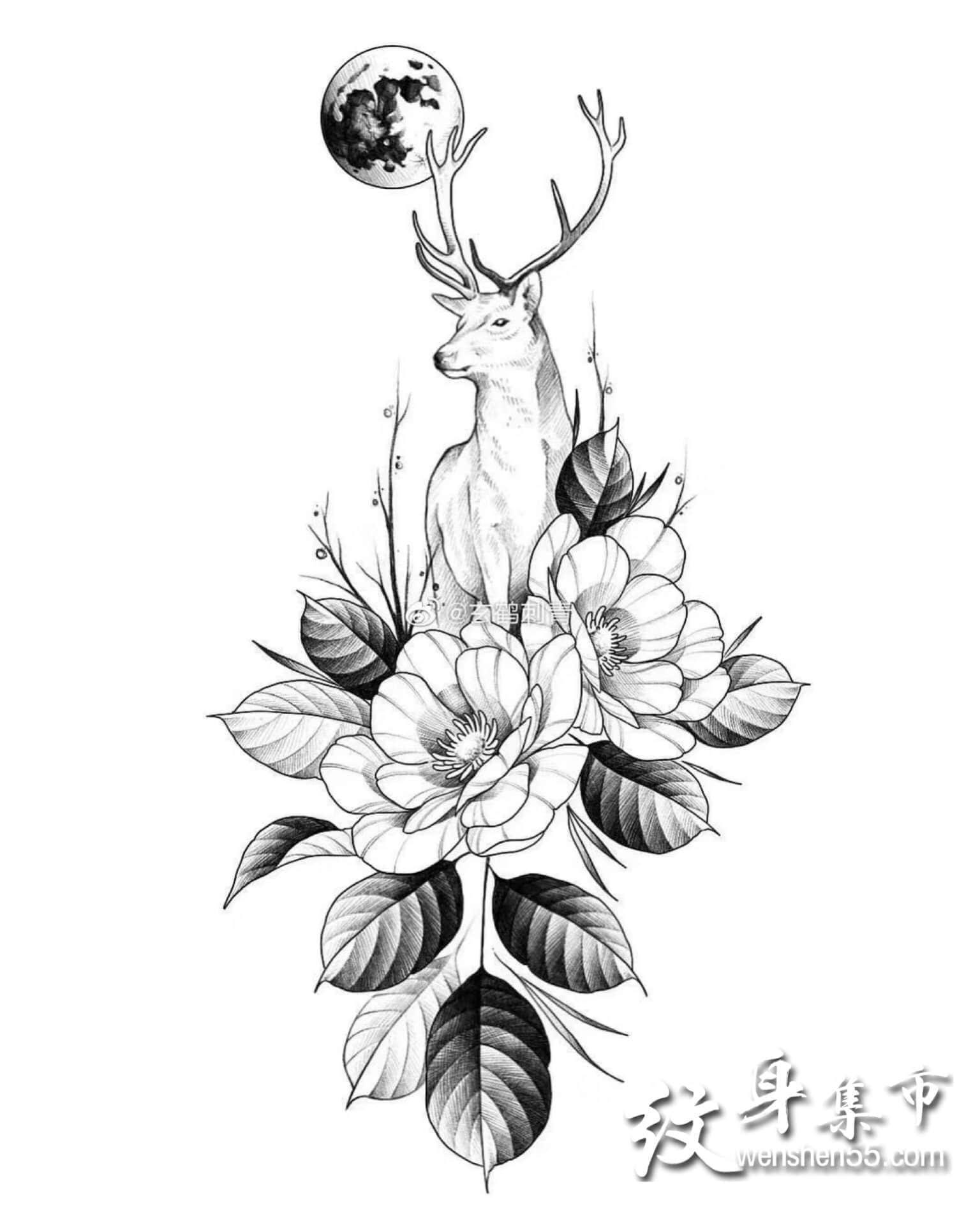 小清新纹身手稿,素花与蛇、鹿、虎纹身手稿