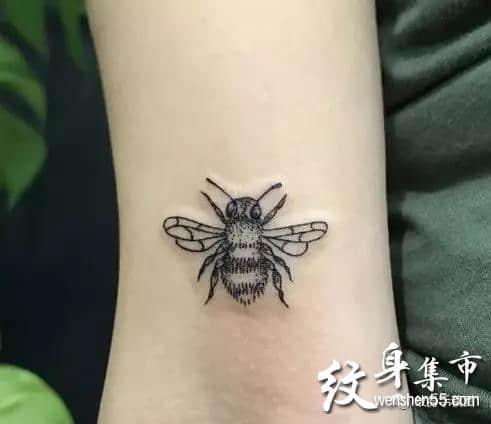 昆虫纹身,昆虫纹身手稿,昆虫纹身手稿图案