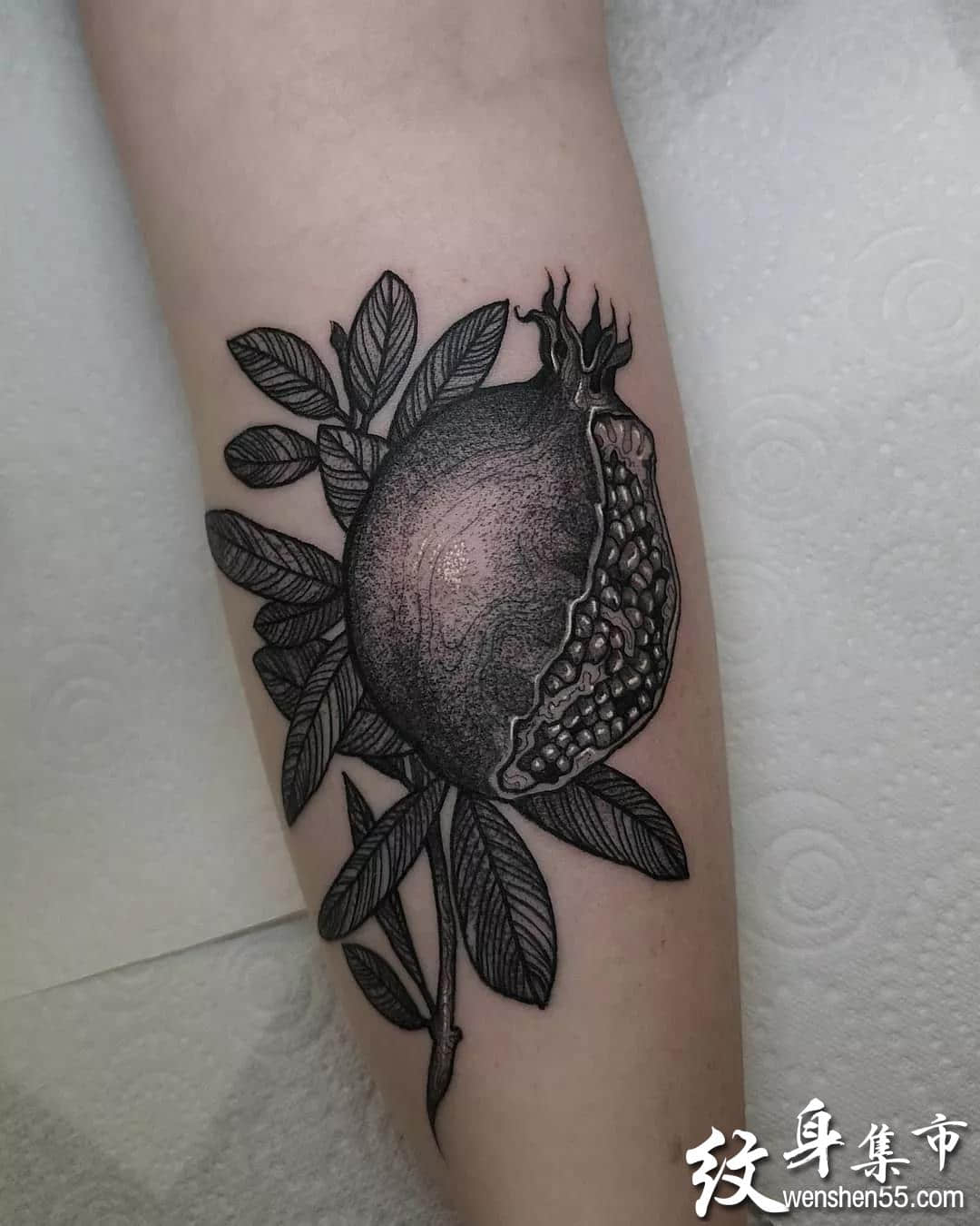 石榴纹身,石榴纹身手稿,石榴纹身手稿图案
