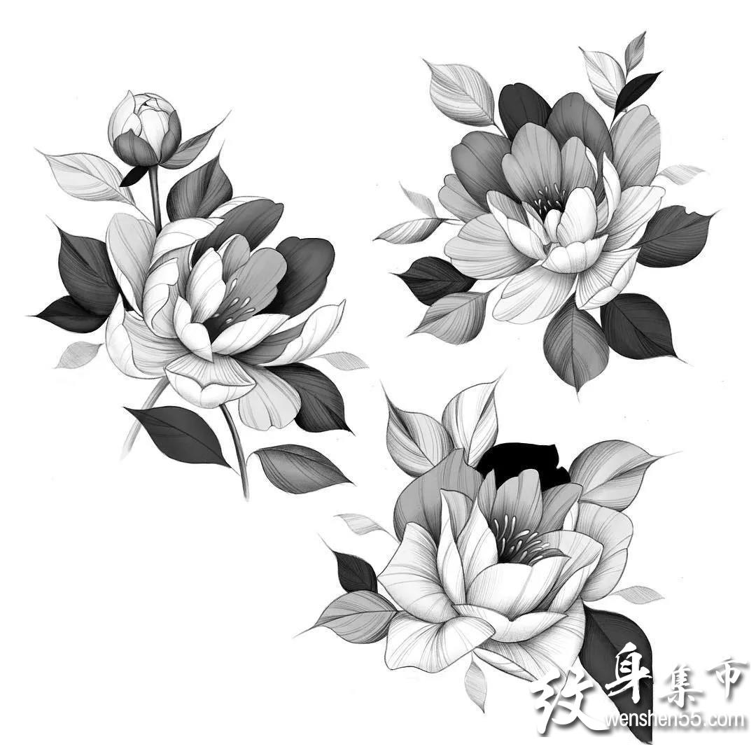 黑灰小图纹身,黑灰小图纹身手稿,黑灰小图纹身手稿图案