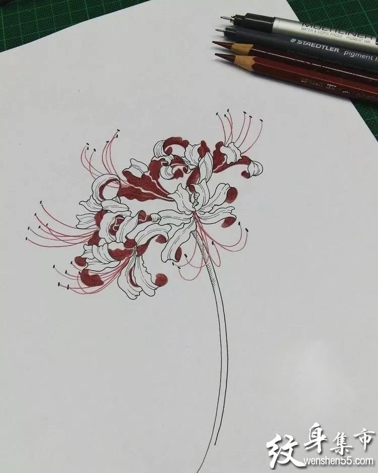 彼岸花纹身,彼岸花纹身手稿,彼岸花纹身手稿图案