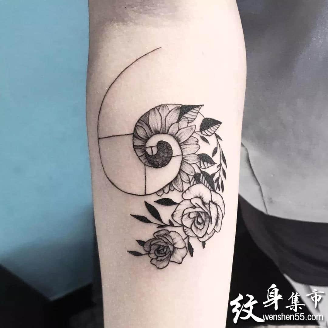 裴波那契数列螺旋纹身,裴波那契数列螺旋纹身手稿图案大全