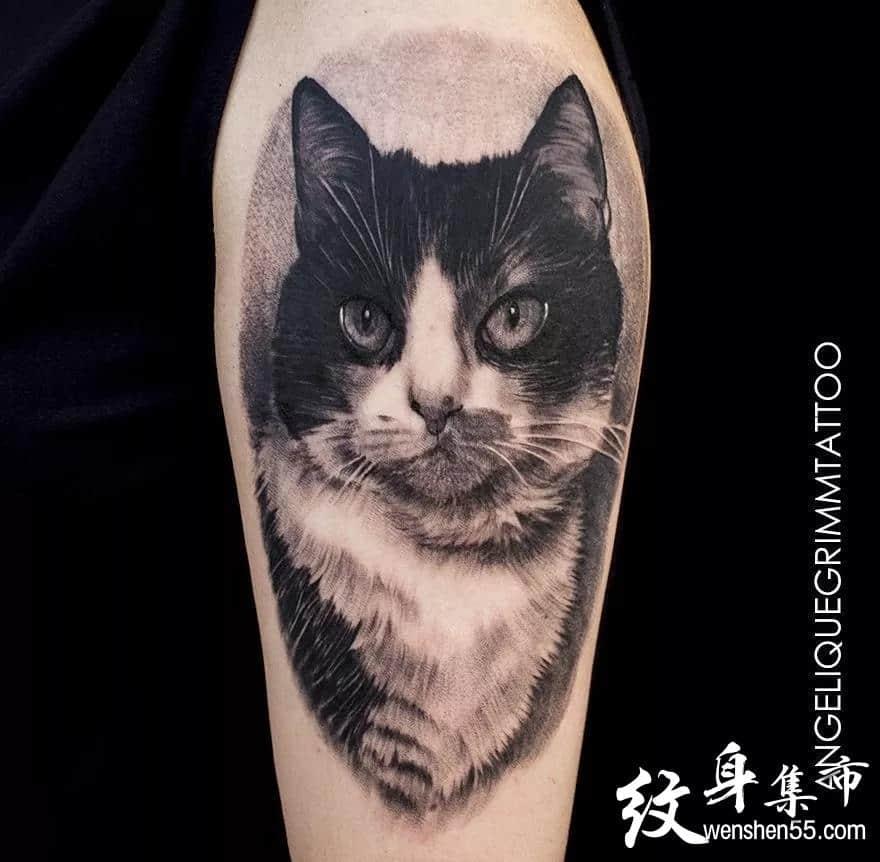 动物写实纹身,动物写实纹身手稿,动物写实纹身手稿图案