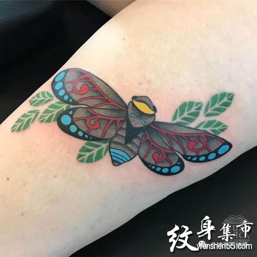 蝉纹身,蝉纹身手稿,蝉纹身手稿图案