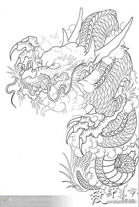 半甲龙纹身,半甲龙纹身手稿,半甲龙纹身手稿图案