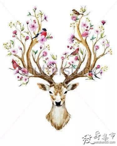 水彩鹿纹身,水彩鹿纹身手稿,水彩鹿纹身手稿图案