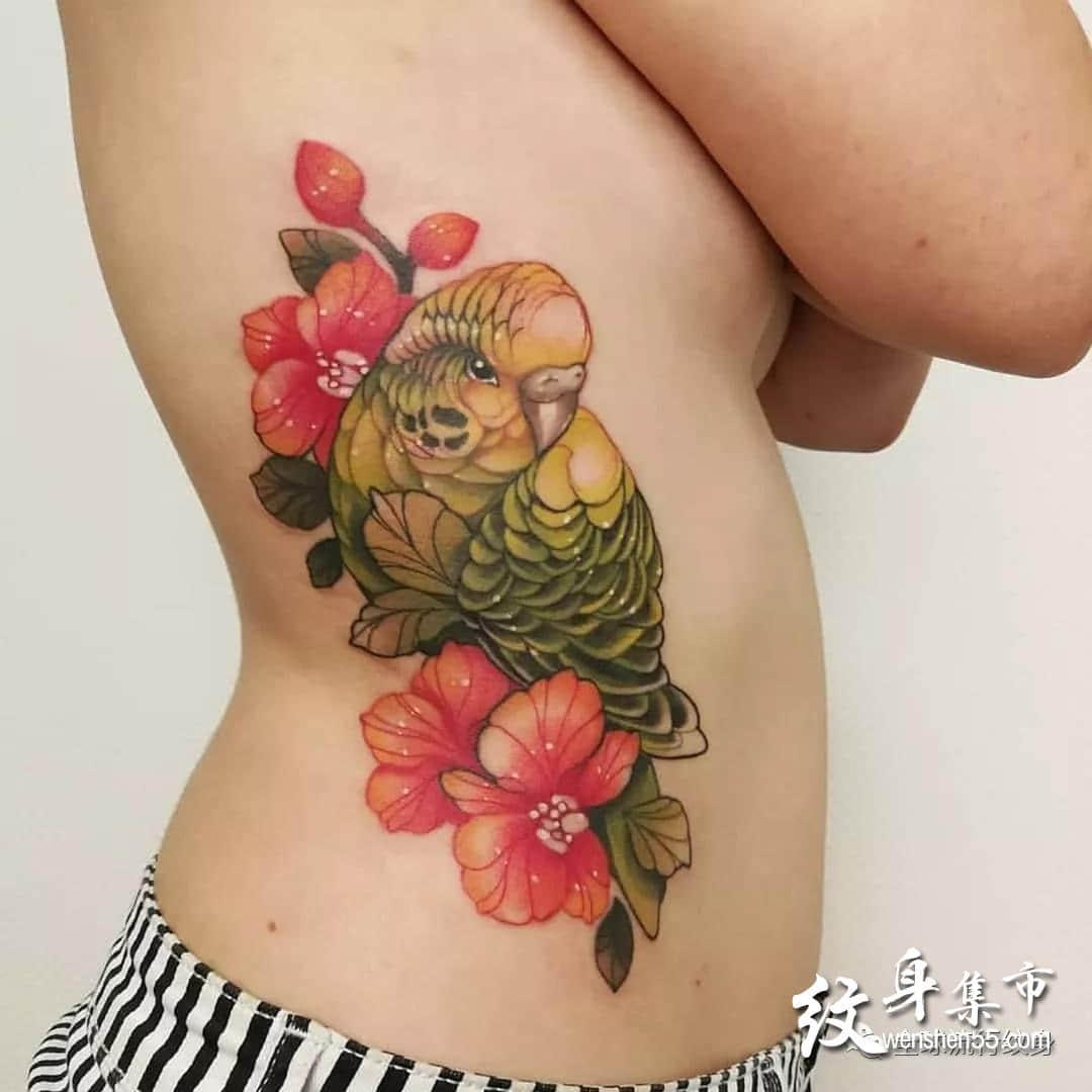 鹦鹉纹身,鹦鹉纹身手稿,鹦鹉纹身手稿图案