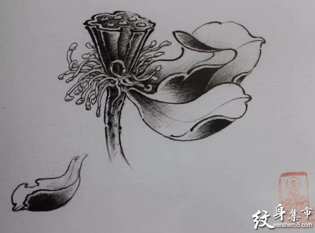 莲花纹身,莲花纹身手稿,莲花纹身手稿图案