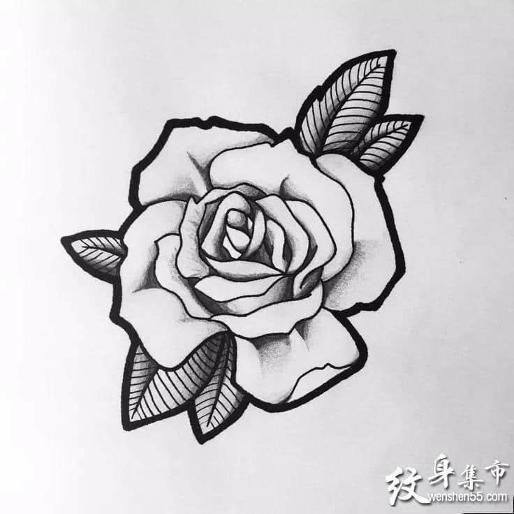 黑灰玫瑰纹身,黑灰玫瑰纹身手稿,黑灰玫瑰纹身手稿图案