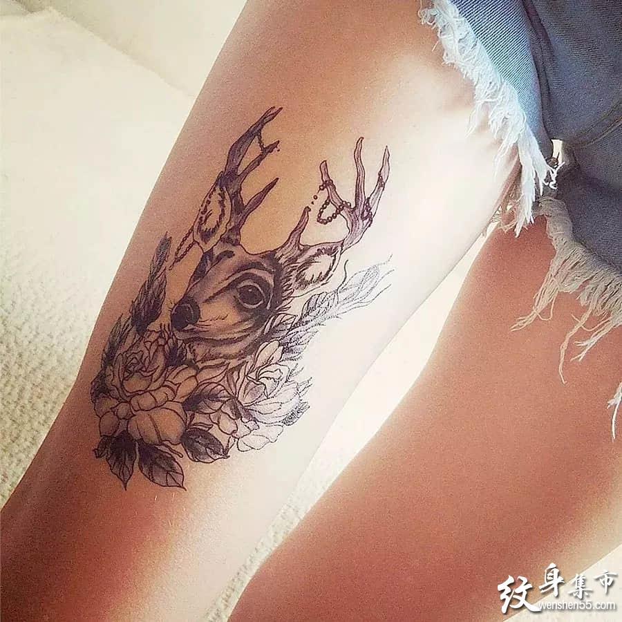 鹿头纹身,鹿头纹身手稿,鹿头纹身手稿图案