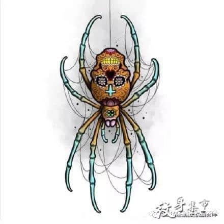 吊脚蜘蛛纹身,吊脚蜘蛛纹身手稿,吊脚蜘蛛纹身手稿图案