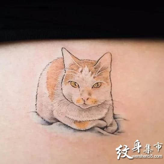 小猫咪纹身,小猫咪纹身手稿,小猫咪纹身手稿图案