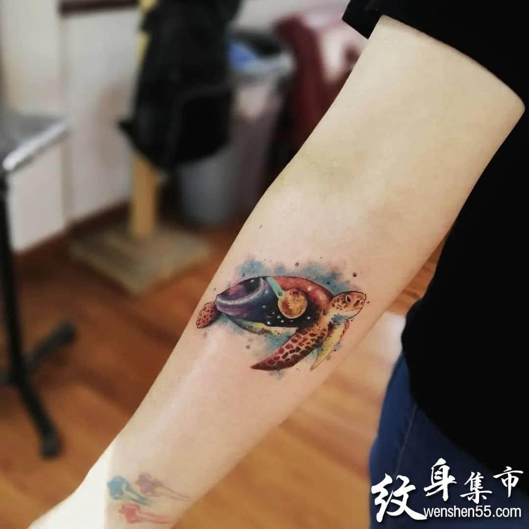 乌龟纹身,乌龟纹身手稿,乌龟纹身手稿图案