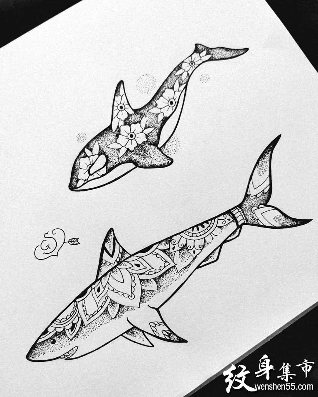 鲸鱼纹身,鲸鱼纹身手稿,鲸鱼纹身手稿图案