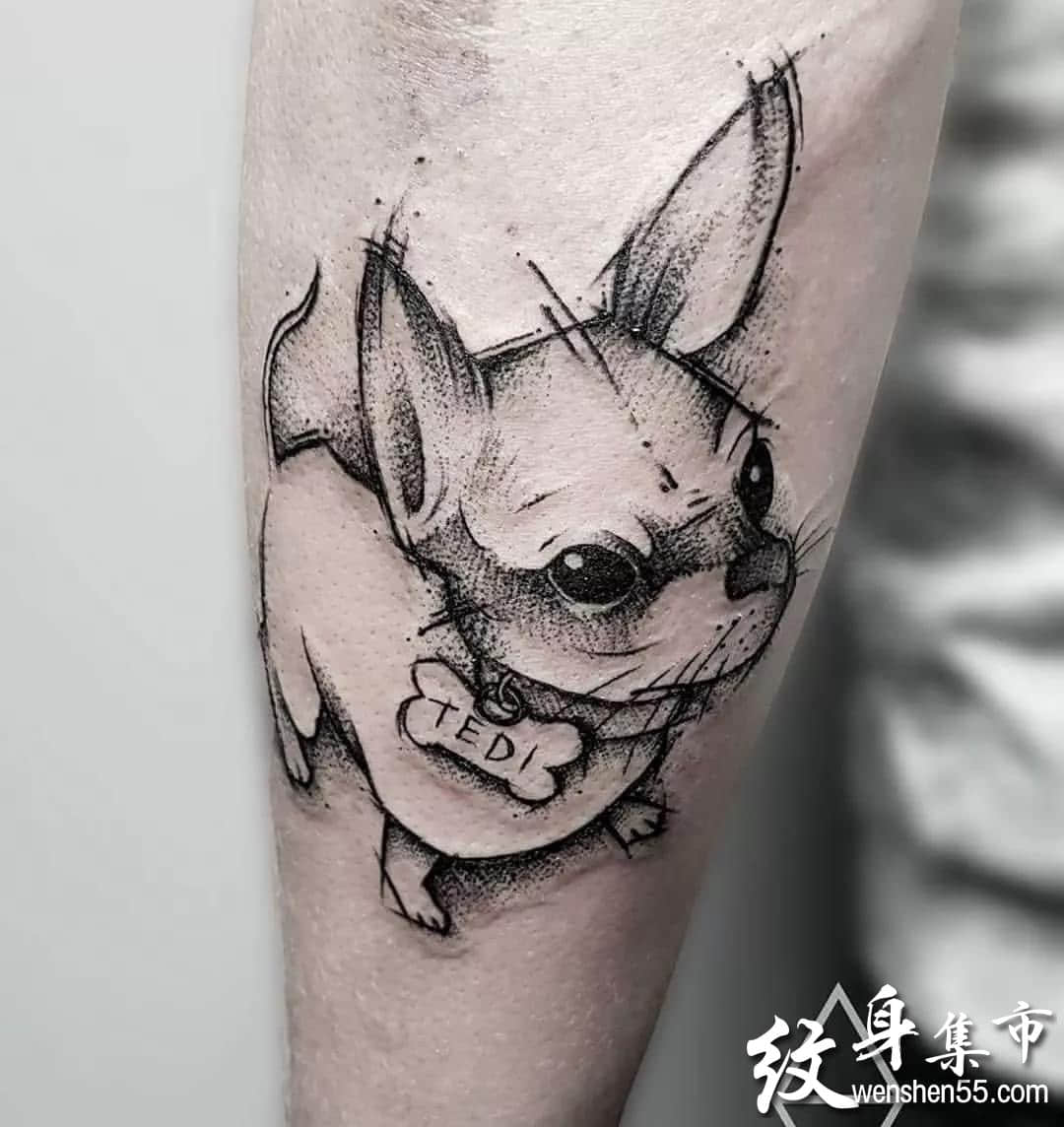 小狗纹身,小狗纹身手稿,小狗纹身手稿图案